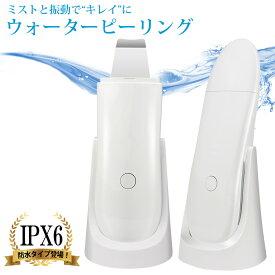 SLOTRE ウォーターピーリング 防水 IPX6 美顔器 毛穴 黒ずみ ケア ピーリング 超音波 角栓 角質 皮脂汚れ ニキビ 超音波美顔器 ミスト機能 イオン導入 イオン導出 ブルーライト発光
