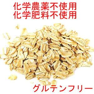 ●送料無料 グルテンフリー NSF認定 FDA合格品 有機 オートミール 業務用バルク 22,68kg 無添加(化学添加物不使用)/ オーガニック Certified Organic Gluten Free Oats Oat meal
