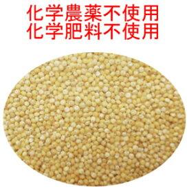 送料無料 USDA認定品 うるちきび 業務用2,6kg×3 卸元直売!化学合成農薬不使用原料 ウルチキビ ウルチきび