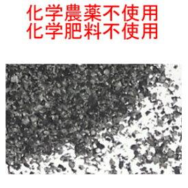 メール便送料無料 (宅配便不可・代引き決済不可・日時指定不可)ブラックシードパウダー 100g(50g×2) 超スーパーフード ( ブラッククミンシード 、カロンジ 、ニゲラ サティバ )Black seeds