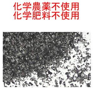 宅配便専用 ブラックシードパウダー 280g 超スーパーフード ( ブラッククミンシード 、カロンジ 、ニゲラ サティバ )Black seeds