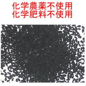 メール便送料無料 (宅配便不可・代引き決済不可・日時指定不可)ブラックシード 50g 超スーパーフード ( ブラッククミンシード 、カロンジ 、ニゲラ サティバ )Black seeds