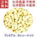 ●送料無料 カシューナッツ (生・無塩)IMO認定品 業務用1kgx2 チャック付 非燻蒸 (化学農薬・化学肥料)不使…