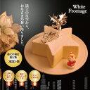 12年連続楽天ランキング1位獲得♪星型がカワイイ♪クリスマスケーキ ホワイトフロマージュ(約14cm)