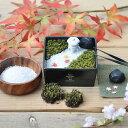 【名入れ】名入れ 苔箱庭キット 変わり種のオリジナルギフト 敬老の日 手作りキット