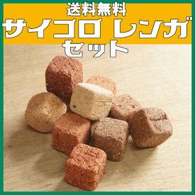 【送料無料】サイコロレンガ(キューブ ブリック) 100個セットミニレンガ キューブブリック おしゃれサイコロ レンガ 花壇用レンガ セット置くだけ 花壇 cube brick