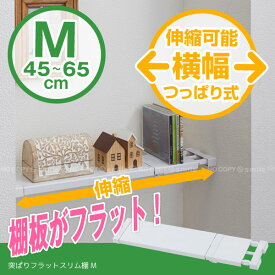 つっぱり棚 /突ぱりフラットスリム棚 M KBS-45/【ポイント 倍】