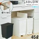 SOLOW ペダルオープンツイン45L / 【送料無料】/ 両開き ペダル式 45Lポリ袋対応 抗菌加工 ゴミ箱 ダストボックス 分別 ごみばこ くず…