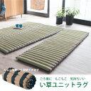 ごろ寝マット 大人 い草 /い草ユニットラグ 60×180cm/【ポイント 倍】【送料無料】