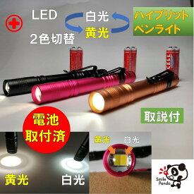 医療用 LED ペンライト ボタン切替 黄光 白光 ノック式 電池取付済み ナース 看護 ポイント消化