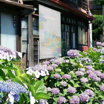 【送料無料】京都万葉舎暖簾(のれん)おぼろ染めのれん紫陽花(O-687)サイズ:約88cm×150cm素材:麻100%あじさい可愛い職人技