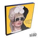 Lady Gaga レディー・ガガ インテリアグラフィックボード お洒落にお部屋を彩るウォールアートパネル【音楽ミュー…