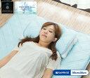 1年保証 ひんやり 枕パッド 2枚セット 50 x 35cm 枕カバー サラサラ エクストリーム ソフトクール 涼感 ひんやり クー…