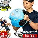1年保証 ウォーターバッグ 体幹 14kg / 14L サイズ 体幹トレーニング コアトレーニング タンク トレーニング ウォータ…