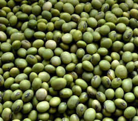 2018年度産 山形県産 青大豆 約1kg送料込み 970g