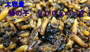 蜂の子(ヘボ・地蜂)300g 煮たて! 【蜂の子佃煮】 【蜂の子甘露煮】【RCP】