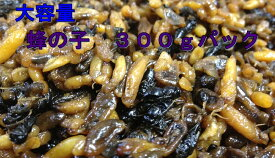 蜂の子(ヘボ・地蜂)300g 煮たて! 【蜂の子佃煮】 【蜂の子甘露煮】