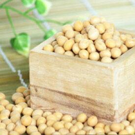 トヨマサリ大豆 大粒2.8分上 北海道産 約1kg 平成30年度産新物 970g