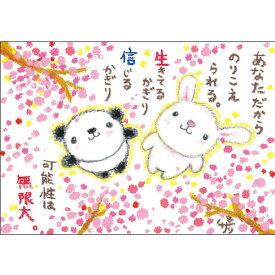 絵描きサリー ポストカード【パンダ・ウサギ】 絵葉書《SSA-40》【ネコポス可】