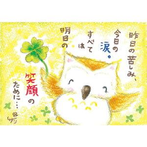 絵描きサリー ポストカード【フクロウ(鳥)】 絵葉書《SSA-45》【ネコポス可】