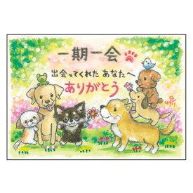絵描きサリー ポストカード【チワワ・柴犬・プードル】 絵葉書《SSA-80》【ネコポス可】