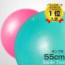 楽天ランキング1位W入賞 バランスボール アンチバースト ノンバースト 55cm 送料無料 フットポンプ ポンプ付き 空気入…