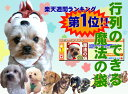 【送料無料】わんこが喜ぶ【魔法の袋】ドッグフード ドックフード 犬 おやつ サンプル クプレラ アズミラ お試…