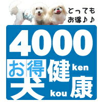 【送料無料】わんこ健康お試しセット4000