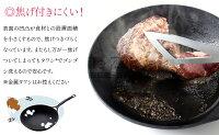 【5/21マツコの知らない世界で紹介されました】岩鉄鉄器ダクタイルパン26cm