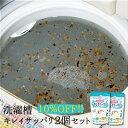 【お買い得2個セット】洗濯槽キレイサッパリ2個セット/洗濯槽洗剤 カビ 汚れ 洗濯物 臭い 消臭 除菌 洗濯槽キレイサッパリ