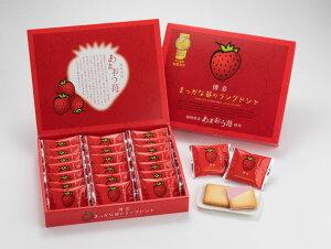【花福堂】博多まっかな苺のラングドシャ 20枚【九州福岡土産】