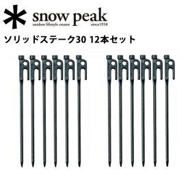【スマホエントリー限定でP10倍!7/19 09:59迄】スノーピーク (snow peak) 【12本セット】6本セット2個 ペグ テント・タープ小物/ソリッドステーク30/R-103 【SP-TACC】