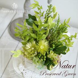 父の日 ギフト 2020 緑寿 お祝い 新生活 グリーン 父 誕生日 「ナチュール」 プリザーブドグリーン 観葉植物 プリザーブド 昇進祝い 退職祝い 男性 お祝い 新築祝い インテリアグリーン