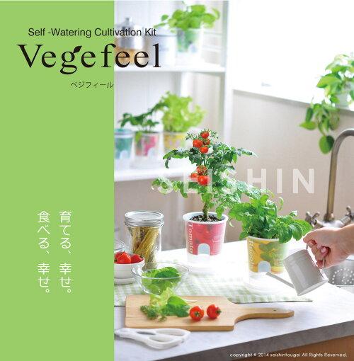 野菜栽培キットベジフィールvegefeel