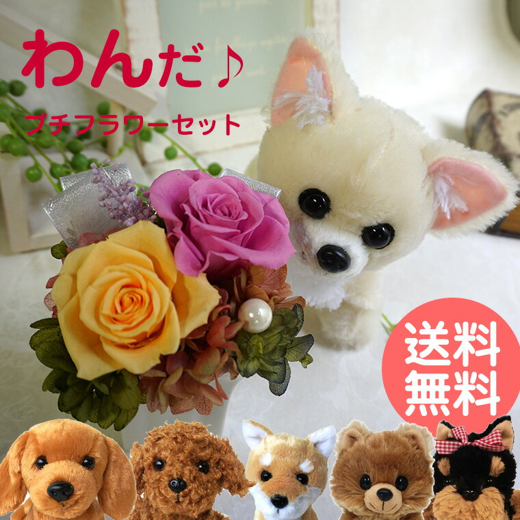 結婚記念日 結婚祝い 結婚式 電報 誕生日 犬 ぬいぐるみ プリザーブドフラワー 花 セット わんだ♪プチフラワーセット