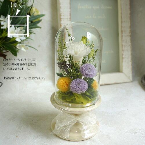 プリザーブドフラワー仏花ドームガラスドームミニ小ガラス初盆お供え物お供えブリザードフラワ−メモリアルガラスドーム
