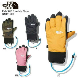 THE NORTH FACE〔ザ・ノースフェイス ジュニア グローブ〕<2021>Kids' WP Freeride Glove/ NNJ61900