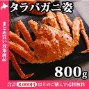 タラバ蟹姿800g前後 /かに/カニ/たらばがに/ギフト/すがた/北国からの贈り物
