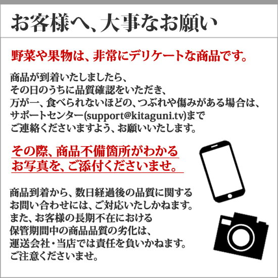 山形県産さくらんぼ佐藤錦