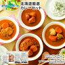 北海道スープカレー10食セット(北国チキンレッグ×2食…