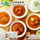 北海道スープカレー20食セット 北国チキンレッグ×5食 南家×5食 天竺×5食 ココナッツ×5食 業務用パッケージ カレー…
