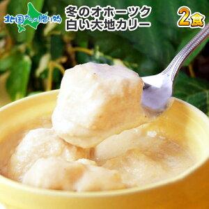 北海道 冬のオホーツク 白い大地カレー 2食セット 手焼きナン付 クリシュナ 流氷カリー 流氷カレー 白いカレー インドカレー ナン カレーセット インスタ映え カレー 送料無料
