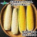 北海道産 トウモロコシ 食べ比べセット 11本 とうもろこし BBQ バーベキュー 雪の妖精 ホワイトコーン スイートコーン…