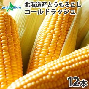 とうもろこし ゴールドラッシュ 12本 2Lサイズ 北海道産 トウモロコシ 甘い 生食 とうもろこし 北海道 生 BBQ バーベキュー 食材 とうきび トウモロコシ トウキビ 生で 食べられる とうもろこ