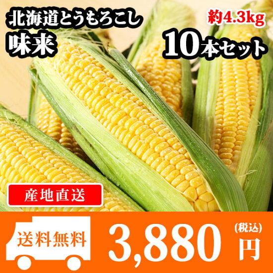 北海道産とうもろこし味来みらい(10本/L-LLサイズ/約4.3kg)送料無料
