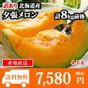 訳あり 北海道産 夕張メロン 個撰 4-7玉 計8kg前後 送料無料 /果物 ◆出荷予定:7月中旬-8月中旬