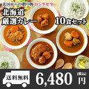 北海道スープカレー10食セット(北国チキンレッグ×2食/南家×2食/天竺×2食/ココナッツ×2食/ランダム2食)業務用パッケージ/カレー …