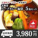 お歳暮 御歳暮 北海道 スープカレー福袋 お楽しみ食べ比べ5食セット カレー セット/レトルトカレー/カレーセット/詰め…