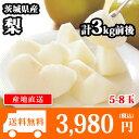 【予約受付中】茨城県産 梨 秀品 ギフト 計3kg前後(5-8個) 送料無料 ◆出荷予定:2017年9月上旬-下旬