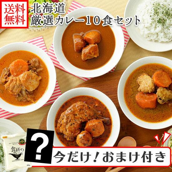北海道スープカレー10食セット